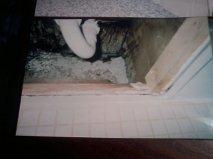 bathroom ceiling one