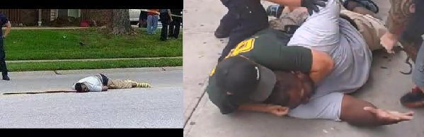 Michael Brown and Eric Garner