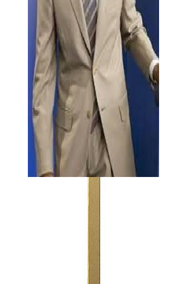 tan suited obama puppet on a stick