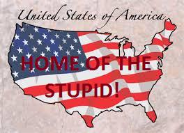 stupid12