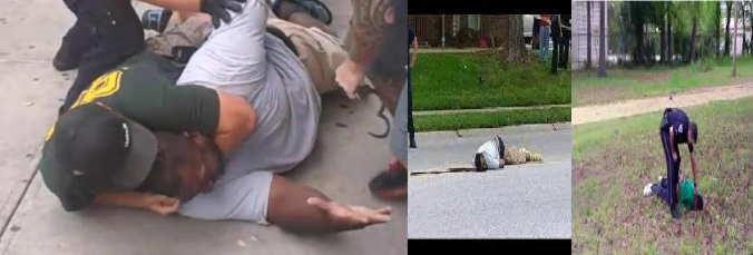 eric garner and michael brown and walter scott