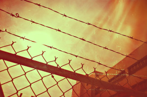 barbed-wire-960248_1280