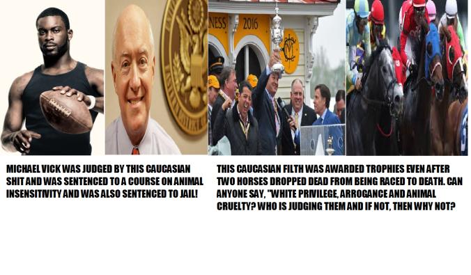 hypocrisy and arrogance and animal cruelty