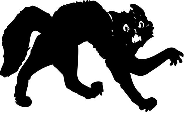 pusssycat